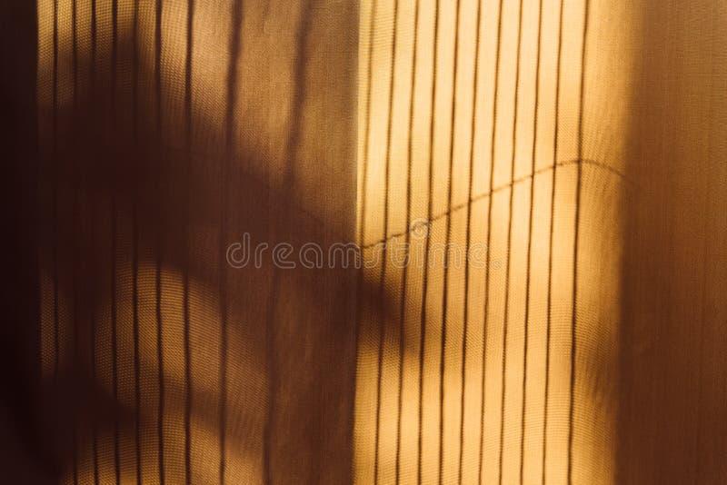 Bomenschaduw op de gordijn uitstekende stijl, abstracte achtergrond royalty-vrije stock afbeelding