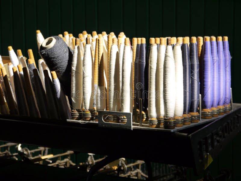 bomullsindustri köar sunlit royaltyfri bild