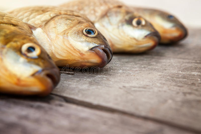 Bon crochet de fishermans photos libres de droits