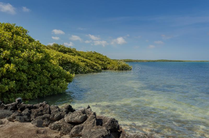Bonaire widok obraz stock