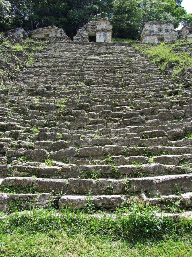 Bonampak fördärvar Grey Steps arkivfoton