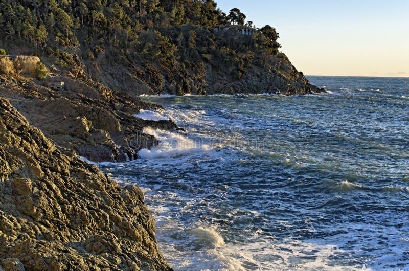 Download Bonassola stock image. Image of nature, swimming, beach - 22750313