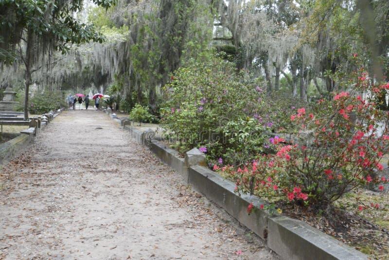 Bonaventure Cemetery an einem regnerischen Tag lizenzfreie stockfotografie