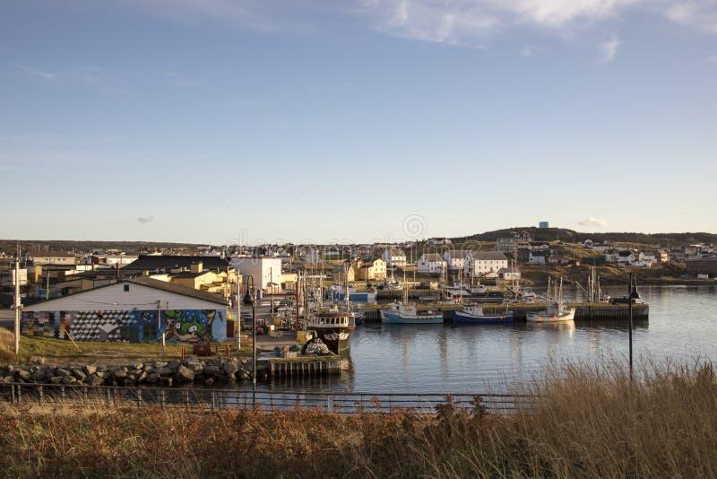 Fishing boats and fishermen in Bonavista harbor, Newfoundland, stock images