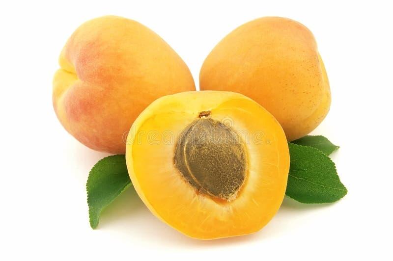 bonbon à abricot photographie stock