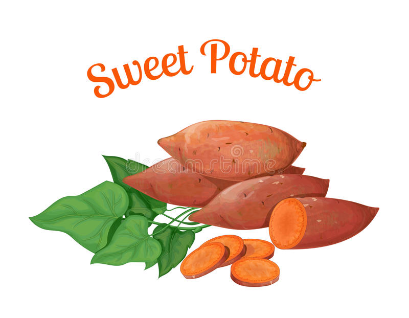 bonbon à pomme de terre illustration de vecteur
