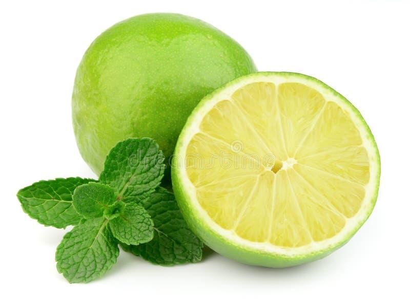 Bonbon- und Saftzitrusfrucht mit Minze stockfotografie