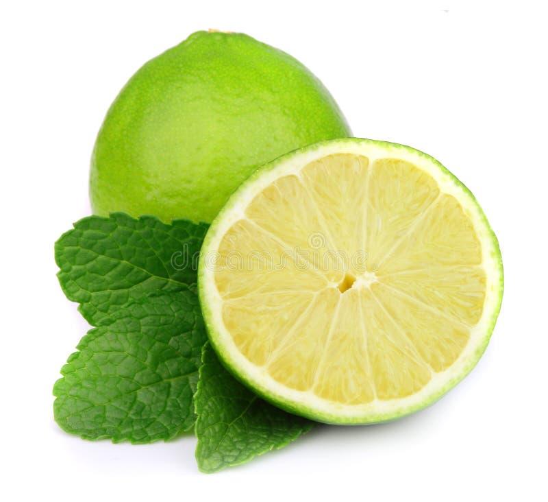 Bonbon- und Saftzitrusfrucht mit Minze lizenzfreies stockbild