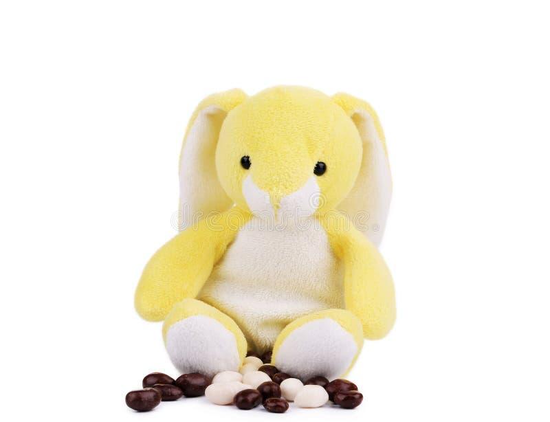 Bonbons кролика и шоколада пасхи. стоковая фотография rf