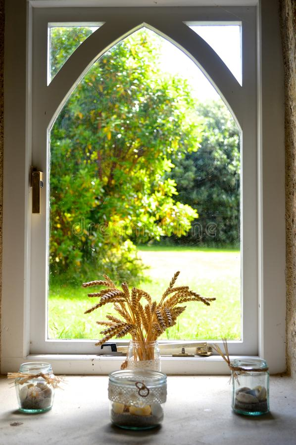 Bond in front a of a window royalty free stock photo