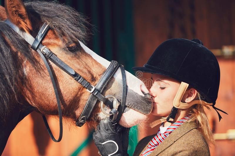 Bond between horse and rider stock photography
