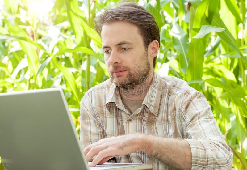 Bonde framme av havrefältet som arbetar på bärbar datordatoren arkivfoton