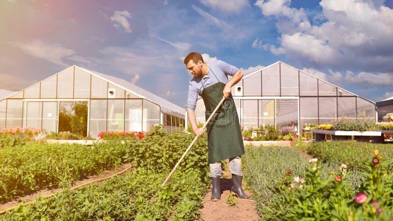 Bonde i jordbruk som odlar grönsaker - växthus i th arkivfoto