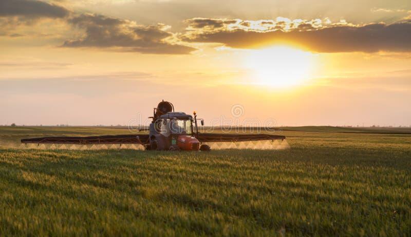 Bonde i traktor som besprutar skördar royaltyfria bilder