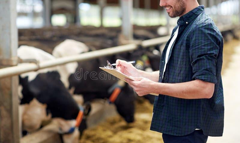 Bonde med skrivplattan och kor i ladugård på lantgård arkivbild