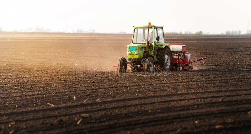 Bonde med traktoren som k?rnar ur sojab?nask?rdar p? det jordbruks- f?ltet royaltyfria foton