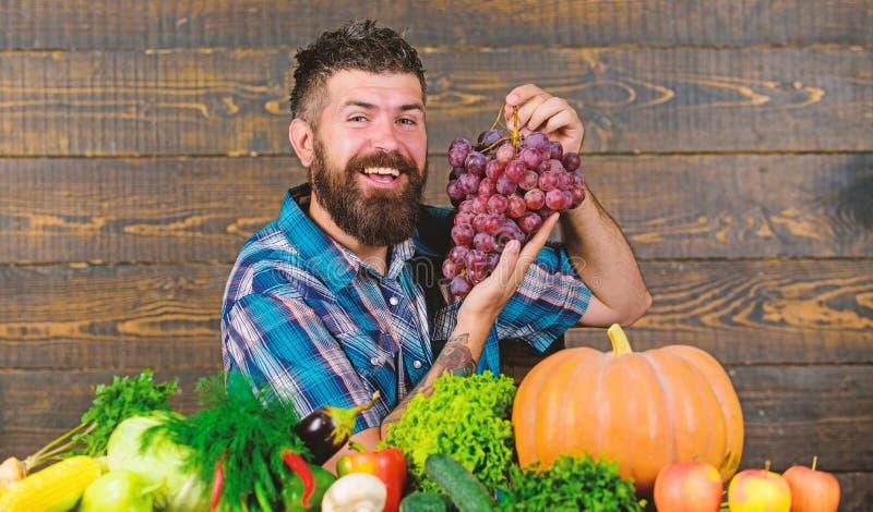 Bonde som är stolt av skördgrönsaker och druvor Lantbruk- och plockningbegrepp Den uppsökte mannen rymmer druvor trä royaltyfri bild