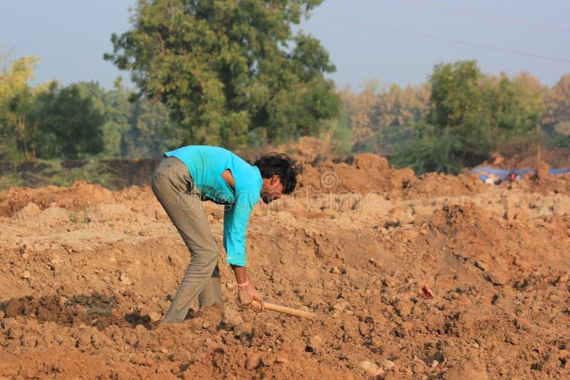 Bonde som arbetar i fält, Indien arkivfoto