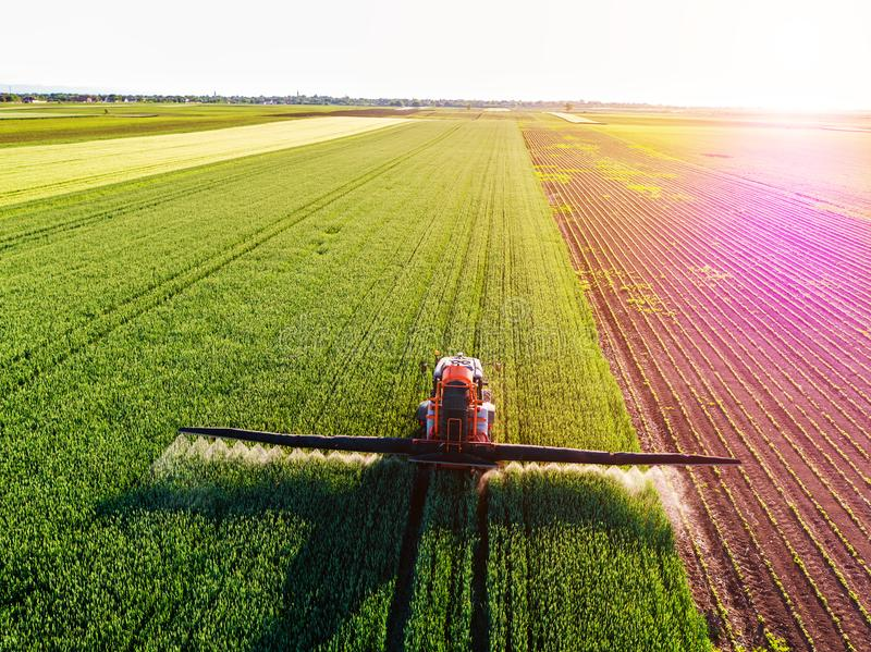 Bonde som besprutar det gröna vetefältet royaltyfri fotografi