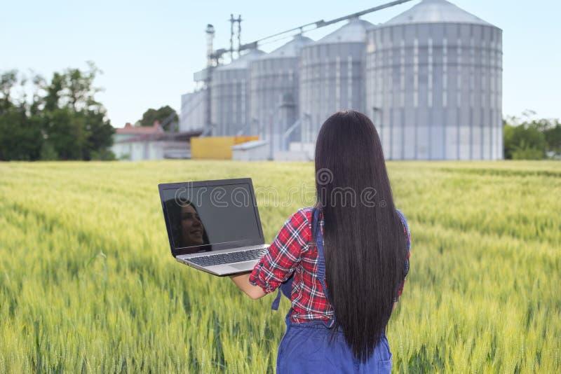 Bondeflicka i kornfält arkivfoto
