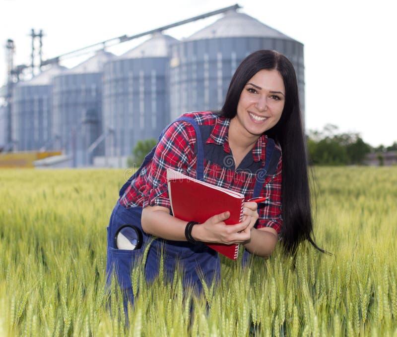 Bondeflicka i kornfält arkivfoton