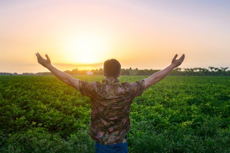 Bondemananseendet med armar lyftte på det gröna fältet för skörden arkivfoto