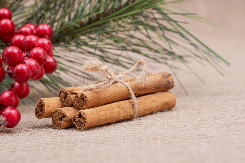 Bonden de de decoratie rode poinsettia van de de wintervakantie, de pijnboom en de bessenstruik met pijpjes kaneel met jutekabel  stock foto's
