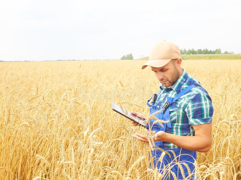 Bonden i en plädskjorta kontrollerade hans fält och arbete på tabl arkivbild