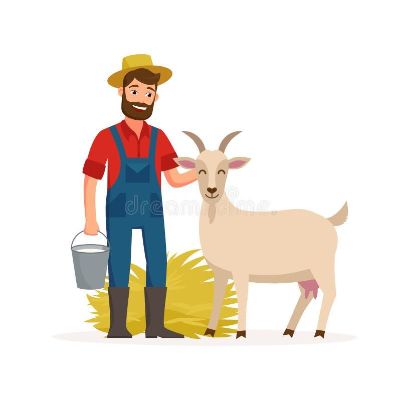 Bonden med geten och hinken med geten mjölkar och hö Illustration för lantbrukbegreppsvektor i plan design Lycklig bonde och vektor illustrationer