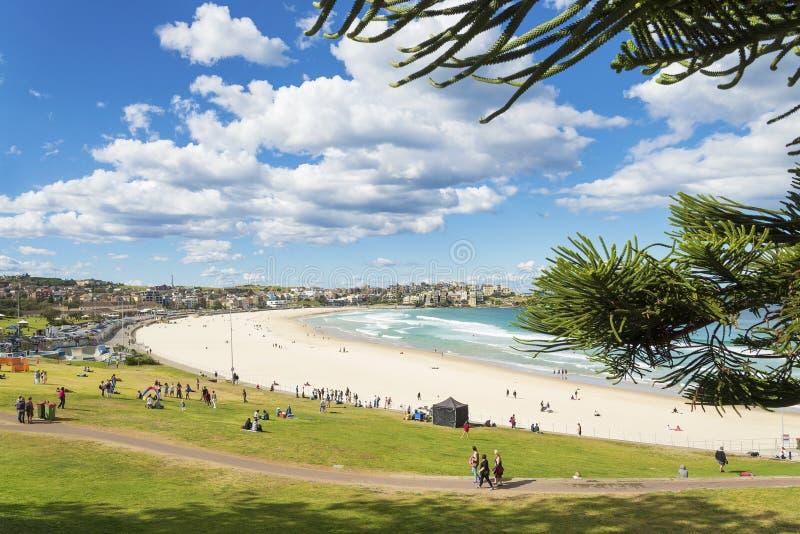 Bondi海滩在悉尼澳大利亚 库存照片