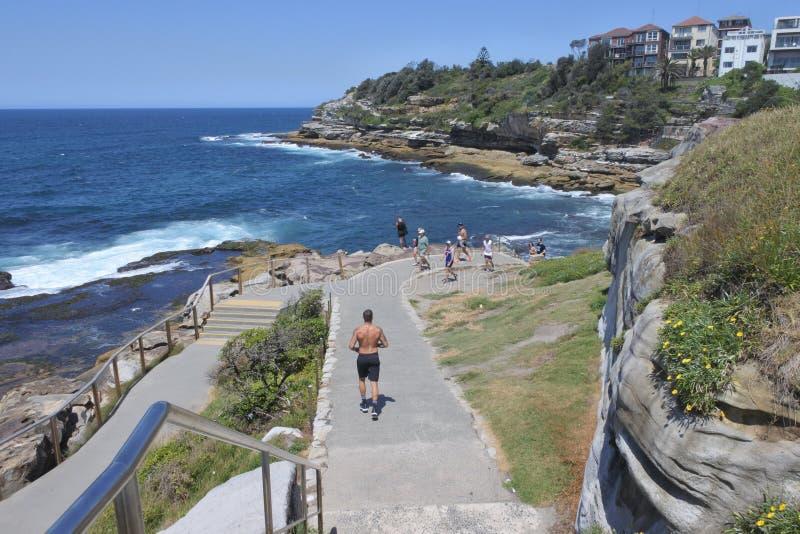 Bondi à la promenade Sydney New South Wales Australia de Coogee photos stock
