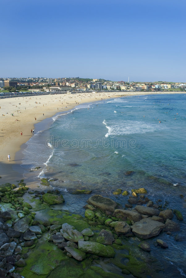 bondi пляжа стоковая фотография