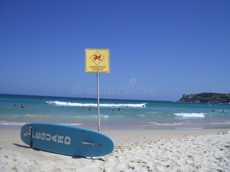 bondi пляжа стоковые изображения