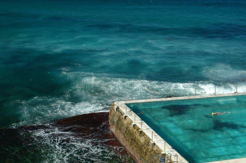bondi Сидней пляжа стоковые фото