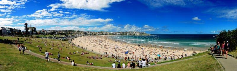 bondi plażowa panorama fotografia stock