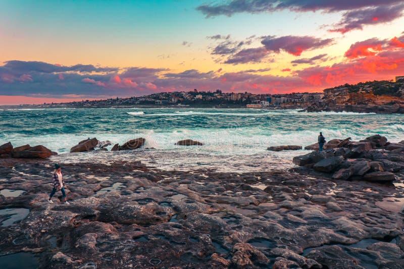 Bondi strand - en oljamålning av en solnedgång royaltyfri bild