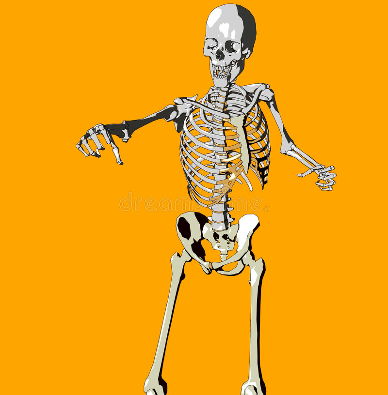 Download Bone 146 stock illustration. Image of haunted, dead, legs - 711924