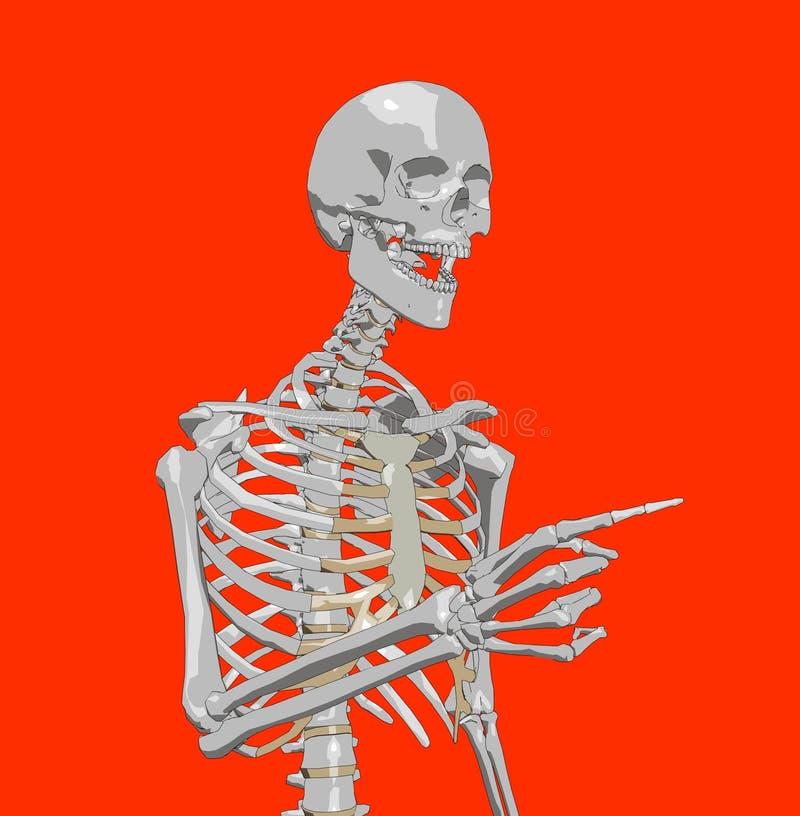 Download Bone 223 stock illustration. Illustration of pose, healthcare - 980262