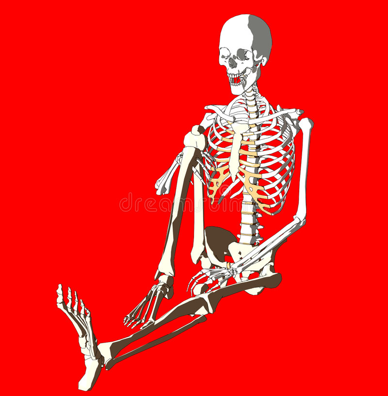 Download Bone 260 stock illustration. Image of heath, fantasy, horror - 711721