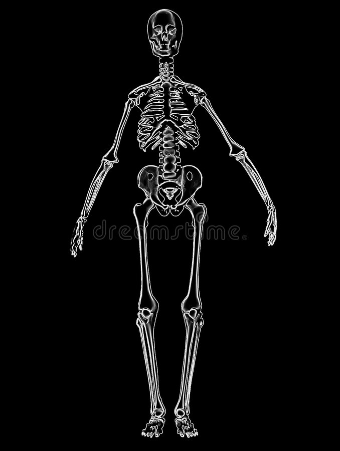 Download Bone 3 stock illustration. Image of scary, horror, computer - 86071