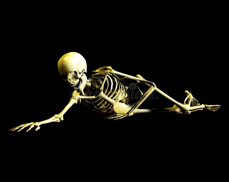 Bone 41 vector illustration
