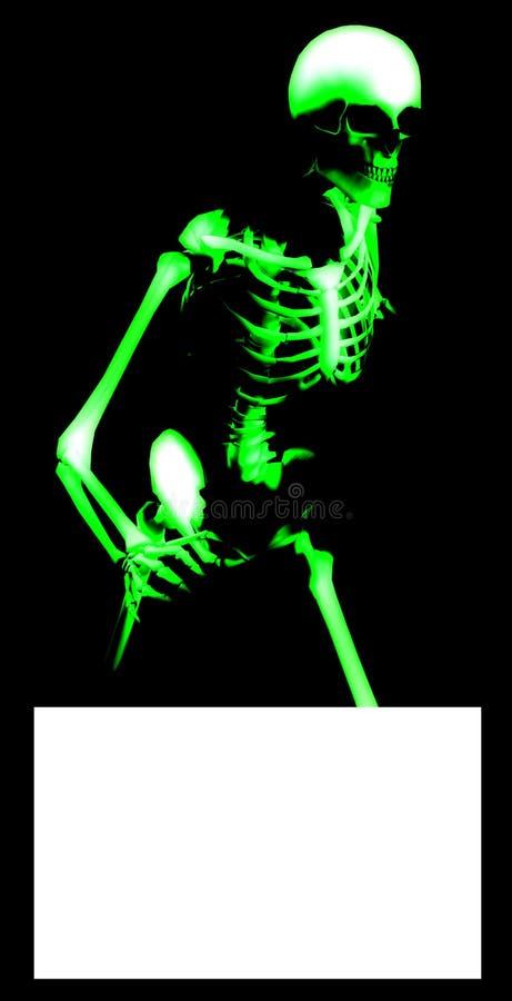 Bone Blank Sign 4 Royalty Free Stock Photo