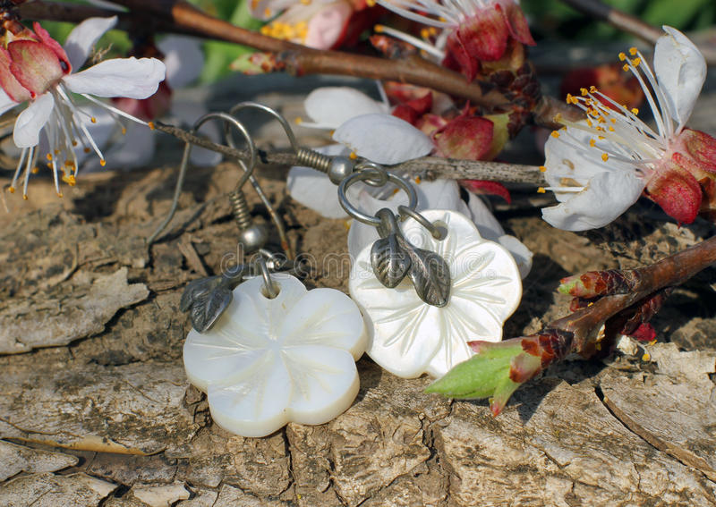 Bone earrings on the nature background. Handmade bone earrings with apricot blossom in spring on the nature background royalty free stock images