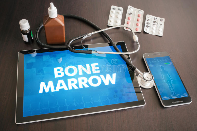 Bone marrow (cancer related) diagnosis medical concept on tablet. Screen with stethoscope vector illustration
