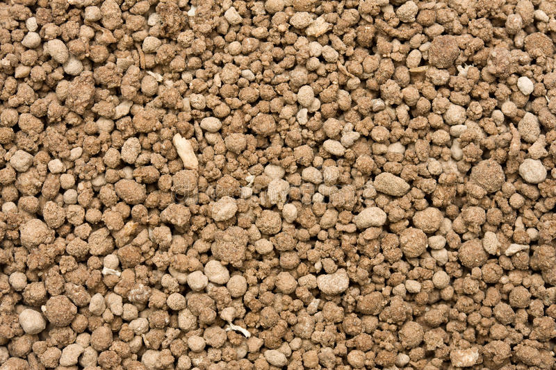 Download Bone meal stock photo. Image of coarse, agriculture, meal - 14855596