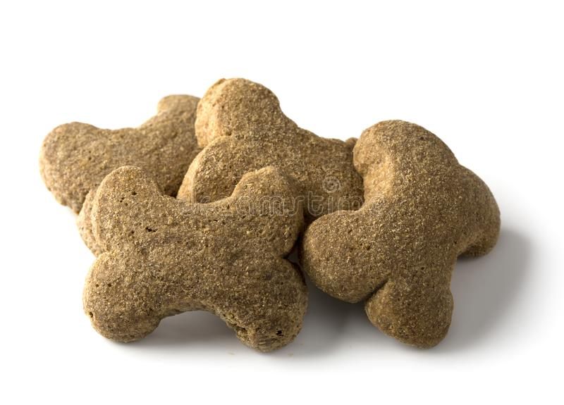 Bone shaped dog biscuit stock image