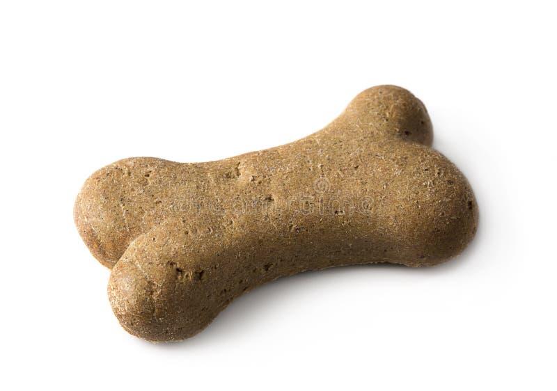 Bone shaped dog biscuit royalty free stock image