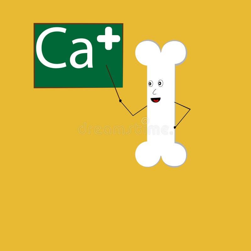 Bone teaching about calcium royalty free illustration