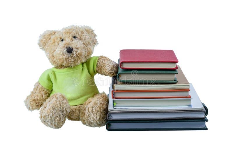 Boneca bonito do urso marrom com muitos livros isolados no fundo branco imagens de stock royalty free