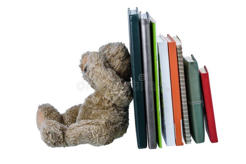 Boneca bonito do urso marrom com muitos livros isolados no fundo branco fotografia de stock royalty free